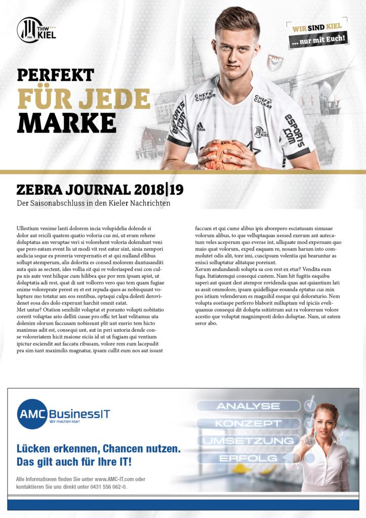 Anzeige Layout Handball IT-Firma Zeitung